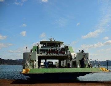 【モフっとしたうさぎがギュッと詰まってます。】うさぎ島・大久野島でのリアル体験談レビュー