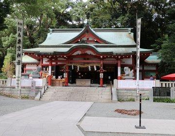 【静岡・熱海】熱海のパワースポット!「来宮神社」愛があふれる境内と願いを叶える大楠があります♪