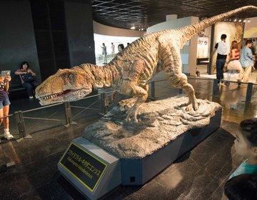 恐竜を親子で楽しめる最高のスポット! 世界に誇る福井県立恐竜博物館で遊び尽くそう!