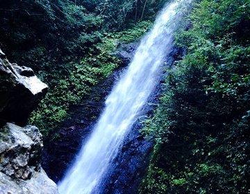 【秋の日帰り満喫プラン!】岐阜の観光 / おすすめ紅葉スポット / 養老の滝