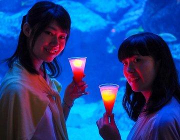 【割引&特典】すみだ水族館で入場料割引+光るドリンクが無料でもらえちゃう!