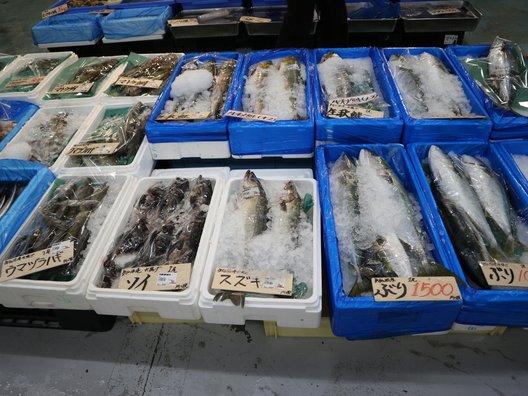 海鮮市場海の市