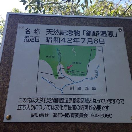 鶴居どさんこ牧場