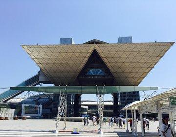 夏休みの自由研究のネタの宝庫!Maker Faire Tokyoで話題の新競技・ドローンレースを観戦