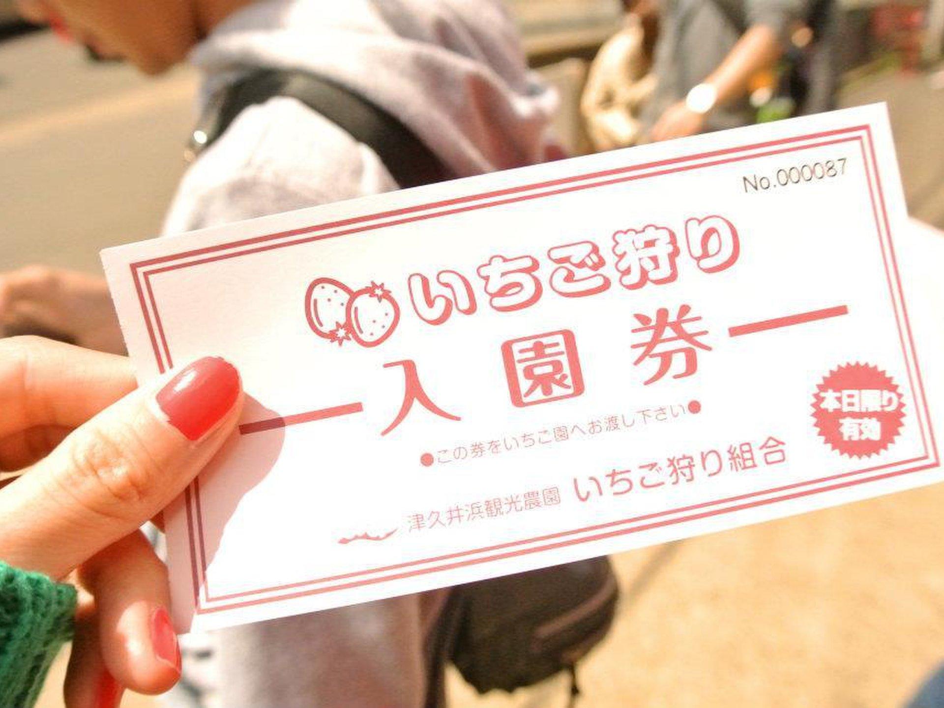 都心から1時間で行けるイチゴ狩り&海鮮丼! 三浦半島を3000円以下で満喫デートプラン