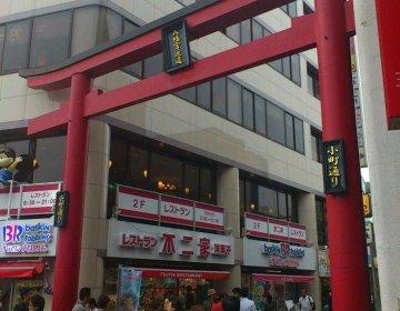 【鎌倉食べ歩きデート!学校・仕事帰りからOK】3000円以下で秋のおでかけ!おすすめスポット