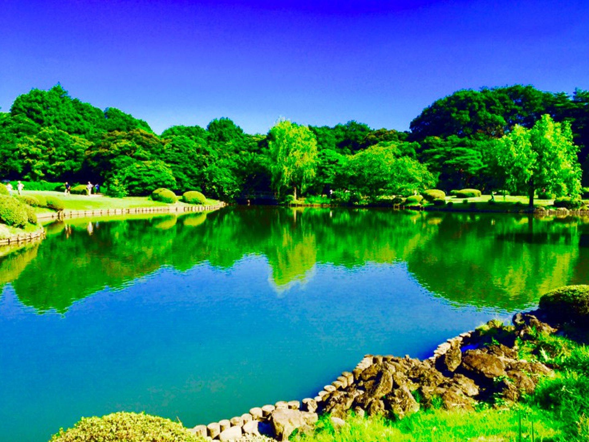 【新宿観光】外国人を案内する時に喜ばれる鉄板観光スポット5選!