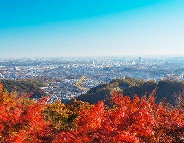 【高尾山・観光】ケーブルカーとリフトを使って、初心者向けハイキング、そばを食して、温泉につかる!