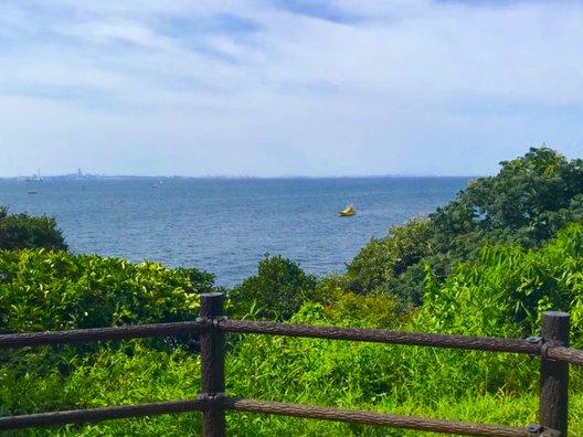 원숭이 섬 요새