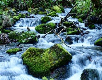 北海道、東北の絶品グルメと大自然を満喫のドライブ旅行【Day4 穴場の渓流散策と本州最北端の地へ】