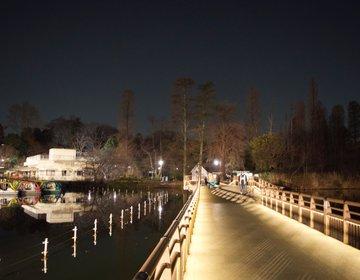 【夜の吉祥寺を散歩】昼間とは違う吉祥寺をぶらぶら歩く。ちょっと大人なプラン。