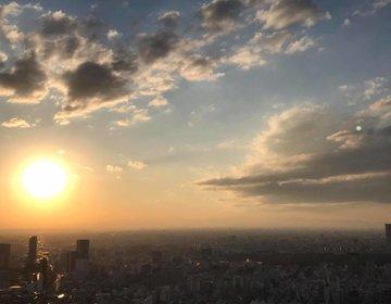 都内トップレベルの最高層屋外で超絶リフレッシュ。六本木ヒルズ東京シティービューで夕焼け夜景絶景堪能。