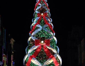 大切な人と行きたいクリスマスNO1♡大阪【USJ】世界一のクリスマスツリーが見れる!