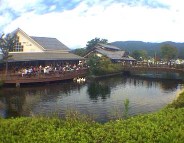 【日本一の道の駅までドライブ!♪】デートやピクニックに最適な穴場スポット♪