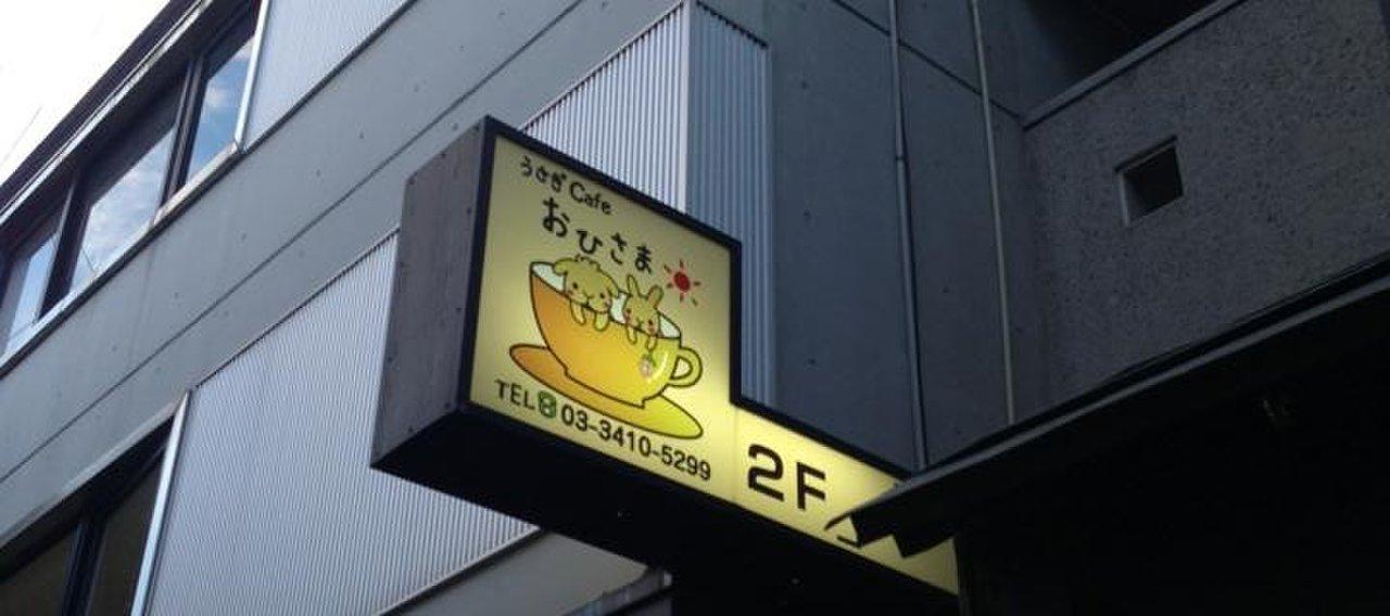 うさぎカフェ おひさま