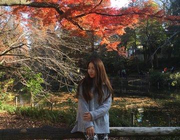 吉祥寺プチプラ¥1,000ランチは井の頭公園を見渡せる『ソラzenon』
