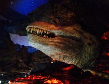 無料なのにクオリティ高!山梨ドライブでお立ち寄りスポット「鉱石ミュージアム」