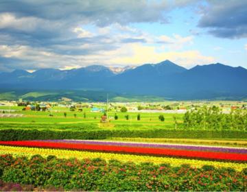 【北海道の大自然の魅力】カメラ好きにはたまらない♪美しい景色の一瞬を撮りに行こう!