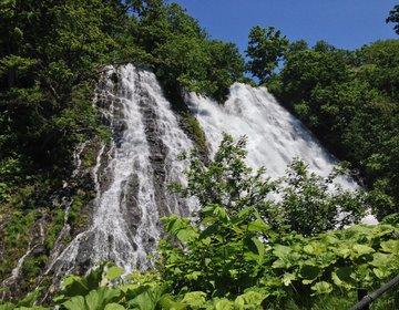 【知床】マイナスイオンをたっぷり浴びる♪日本の滝100選に選ばれた大迫力の「オシンコシンの滝」