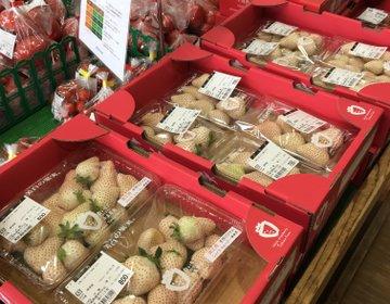 新鮮な野菜や果物、玄界灘の魚介が買えます【福ふくの里】糸島ドライブスポット☆