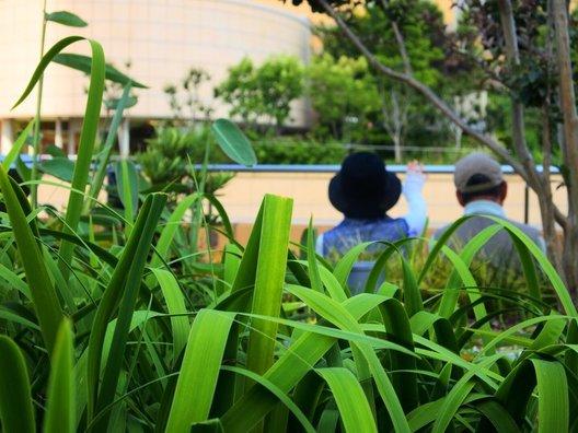 Parks Gardens
