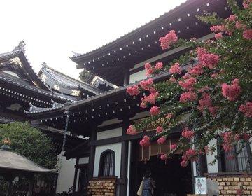鎌倉【長谷寺〜HASE TEMPLE】世界中から愛される、魅力だらけのお寺❤︎Eng ver