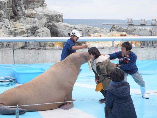 大分マリーンパレス水族館 うみたまご