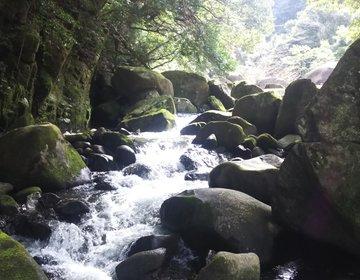 博多から300円で乗れる新幹線で10分!自然に囲まれた那珂川町で都会の喧騒を忘れてお散歩しよう!