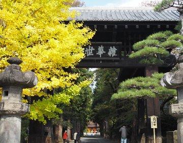 【山梨旅】武田家ゆかりの菩提寺「恵林寺」は、紅葉の名所でもあった!桜の季節もおすすめ♡