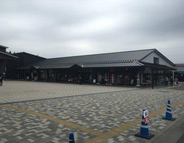 【日光駅近・人気】新鮮野菜やご当地土産が揃うテーマパーク「道の駅日光」