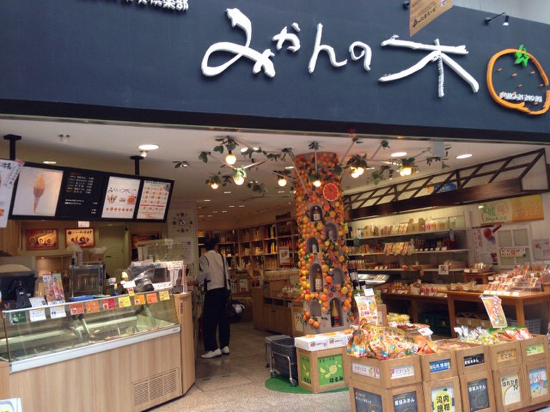 えひめ果実倶楽部みかんの木 ハイカラ通り店