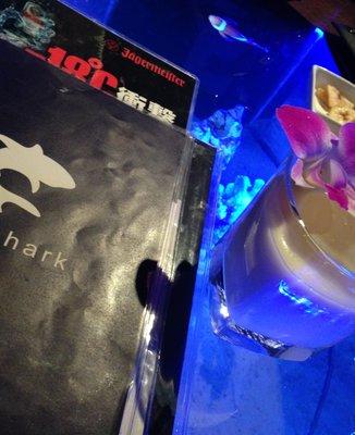 bar shark