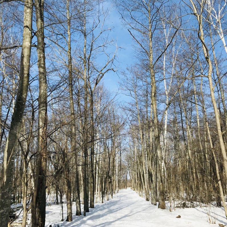帯広の森 はぐくーむ