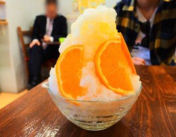 「大阪で最も新鮮なかき氷はココだ!」100年続く老舗果物屋の期間限定!本当にうまいかき氷!