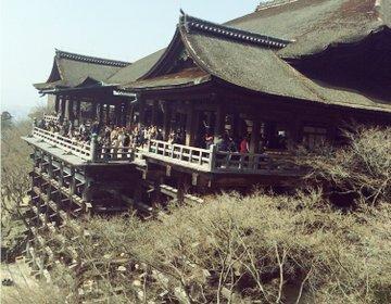 京都旅! 定番の京都旅スポットをご紹介します!