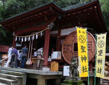 金運アップにご利益のある秩父「聖神社」そのパワーが凄かった!シンボルはムカデ??