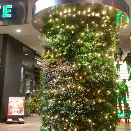 神戸アールティー アメリカ村心斎橋ビッグステップ店