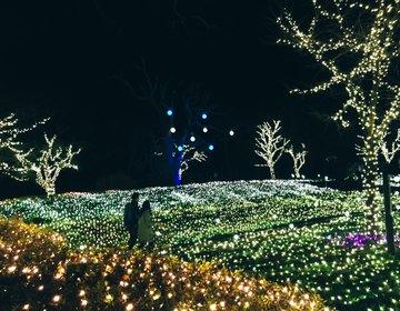 【江ノ島・イルミネーション】夜の江ノ島がキレイすぎる♡イルミと夜景両方楽しんじゃおう♪