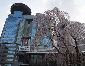 赤坂サカスのイースターエッグイベント「ママサカス」お子様連れにおすすめ!