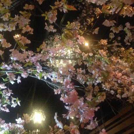 デ サリータ 渋谷