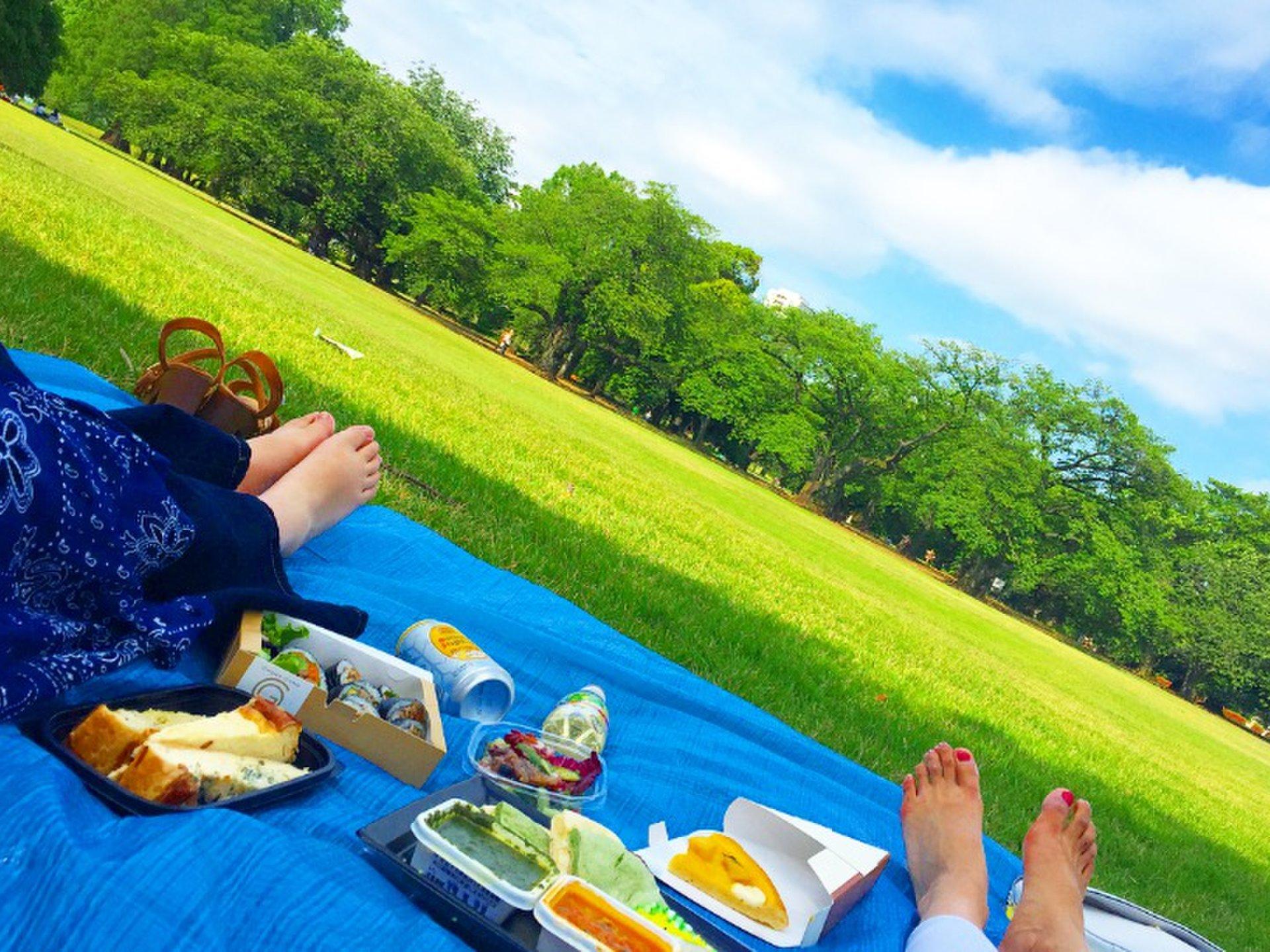 【新宿御苑デートが楽しすぎる!?】恋人と一緒にピクニックデートしよう♪