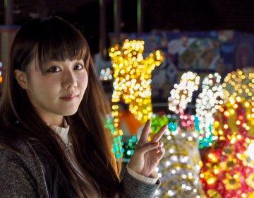 東武動物公園のイルミネーションを侮ってはいけない【埼玉最強デートスポット】