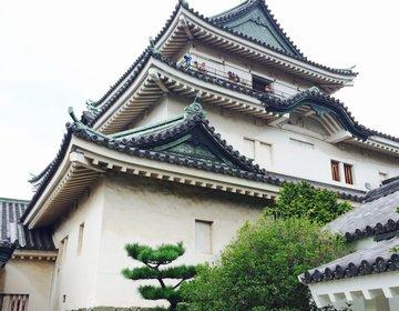 【和歌山県のおすすめ鉄板観光スポット】和歌山城の麓にはなんと入場無料の動物園が!忍者にも出会える!