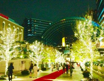 【冬の恵比寿】タイムアウト カフェ&ダイナー に行った後は恵比寿のイルミネーション!
