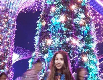シンガポールおすすめ夜景♡巨大植物園無料鑑賞・幻想的なライトアップショー