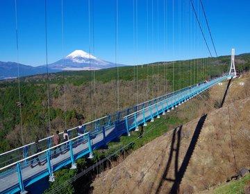 三島でウナギを食べて、三島スカイウォーク(MISIMA SKYWALK)で富士山の絶景をのぞむ!