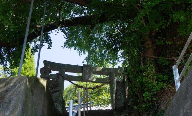 諏訪神社(熊本県上天草市)