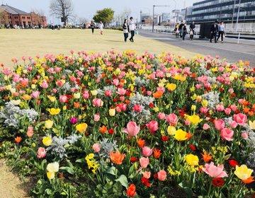 【カップル必見】春の横浜はお花だらけ♡120%インスタ映えするフラワーパレット街歩き特集!