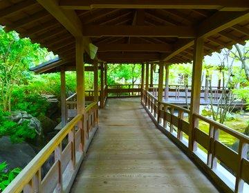 【姫路で楽しむフォトジェニック】姫路城のお庭好古園へ行こう!