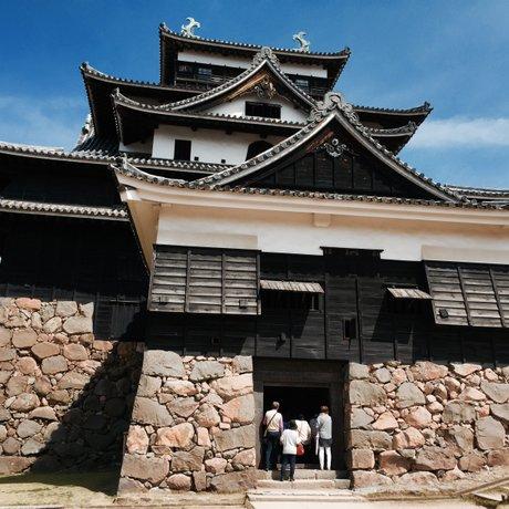 松江城 (千鳥城)